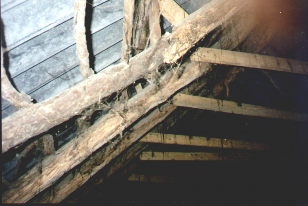dak hulsbeek 9 balk gebroken nieuwe ernaast-2